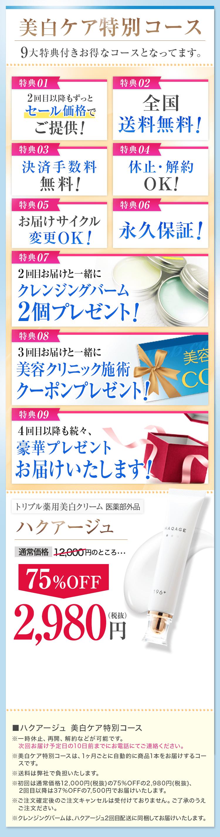 美白ケア特別コース 9大特典付き 75%OFF2,980円
